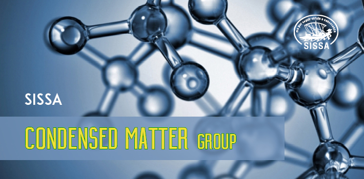 Condensed Matter Sector